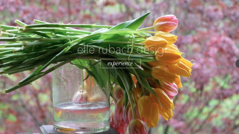 Neiman Launches Website for Elle Rubach Design